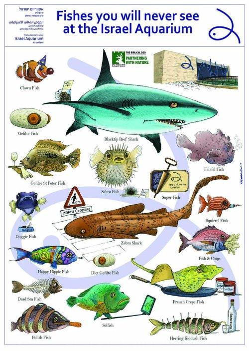 Aquarium zoo Jeru.jpg