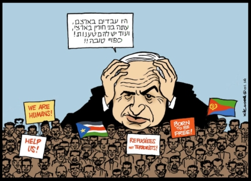 Bibi Migrants