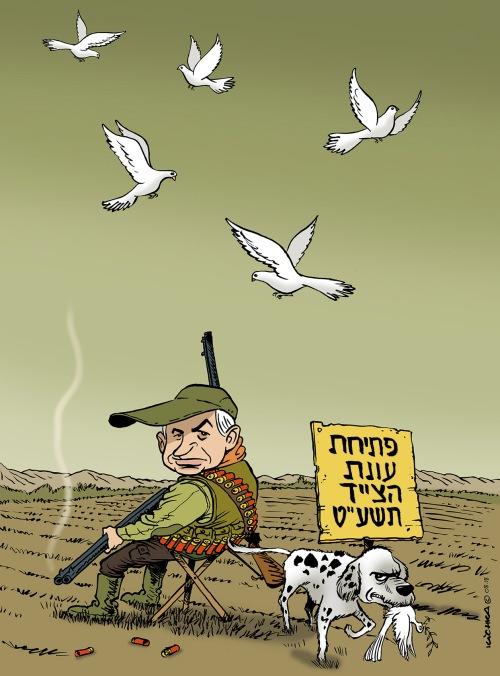 Bibi hunter