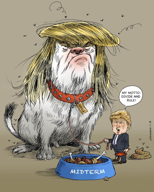 Trump Midterm