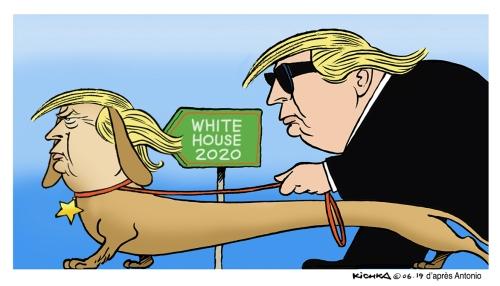 Trump 2020 en
